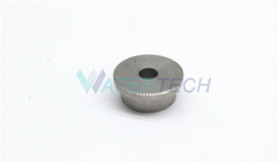 WT014641-1 Direct Drive Check Valve Outlet Seat on Water Jet Cleaning Machine